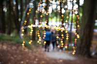 Festive Creative Blur Background, Arts A Glow Festival 2017, Dottie Harper Park, Burien, WA, USA.