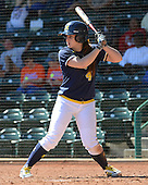 Michigan Wolverines Softball infielder Taylor Hasselbach (4) at bat during a game against the Bethune-Cookman on February 9, 2014 at the USF Softball Stadium in Tampa, Florida.  Michigan defeated Bethune-Cookman 12-1.  (Copyright Mike Janes Photography)