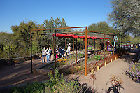 The Desert Botanical Garden, Phoenix, AZ, 2010-2011.The Center for Desert Living strives to sharpen and refine the image of Arizona's desert lifestyle. Leigh Kyle, RLA. Photo by Spurlock Poirier Landscape Architects.