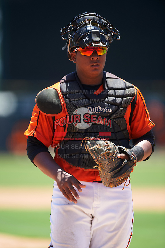 GCL Orioles catcher Jean Carrillo (36) during a game against the GCL Twins on August 11, 2016 at the Ed Smith Stadium in Sarasota, Florida.  GCL Twins defeated GCL Orioles 4-3.  (Mike Janes/Four Seam Images)