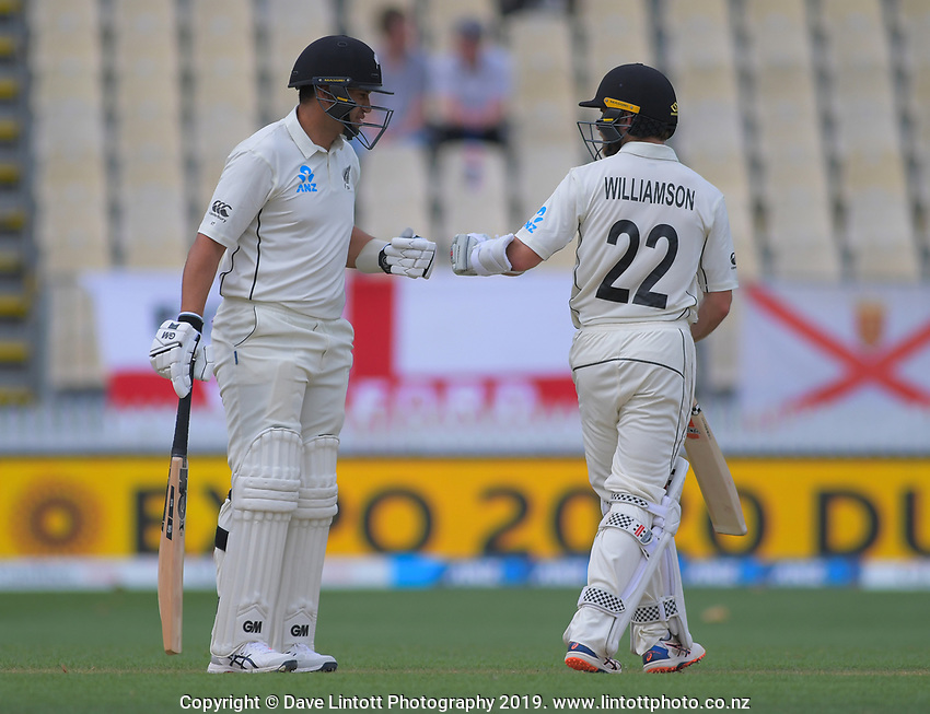 NZ's Ross Taylor and Kane Williamson during day four of the international cricket 2nd test match between NZ Black Caps and England at Seddon Park in Hamilton, New Zealand on Friday, 22 November 2019. Photo: Dave Lintott / lintottphoto.co.nz