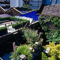 Two roof terraces, the lower one showing a wilder inclination, the higher more organised and with a wall painted azure blue