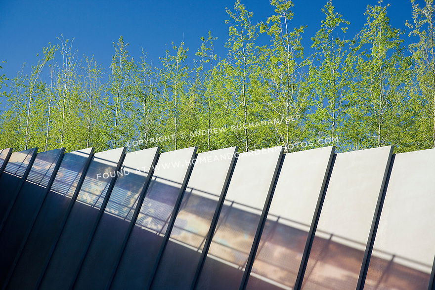 "More than 200,000 cubic yards of fill were brought to the Park site from a downtown construction project to raise the ground level far above the existing train tracks that bisected it.  These sculptural concrete slabs topped with the aspens of the Grove section of the Park support the embankment that is the wall of the train track right-of-way (just below the edge of the frame).  Seen in silhouette on the embankment's wall is the late afternoon sun passing through the glass wall of Teresita Fernåndez's, ""Seattle Cloud Cover"" that forms the sky bridge over the tracks and connects the two portions of the Park -- city side and water side.  Nowhere is the intended meeting of plants, sky, and art more obvious.  SAM's Olympic Sculpture Park, Seattle, WA."