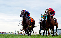 FRANKLIN, KY - SEPTEMBER 08: Proforma #2 (red cap) outduels White Flag #7, ridden by Joel Rosario, to win the Kentucky Downs Turf Sprint on Kentucky Turf Cup Day at Kentucky Downs on September 8, 2018 in Franklin, Kentucky. (Photo by Scott Serio/Eclipse Sportswire/Getty Images)