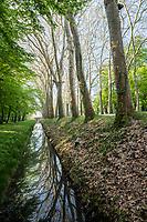 France, Indre-et-Loire (37), Chenonceaux, château et jardins de Chenonceau, canal bordé d'arbres