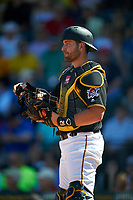 Pittsburgh Pirates catcher Francisco Cervelli (29) during a Spring Training game against the Boston Red Sox on March 9, 2016 at McKechnie Field in Bradenton, Florida.  Boston defeated Pittsburgh 6-2.  (Mike Janes/Four Seam Images)