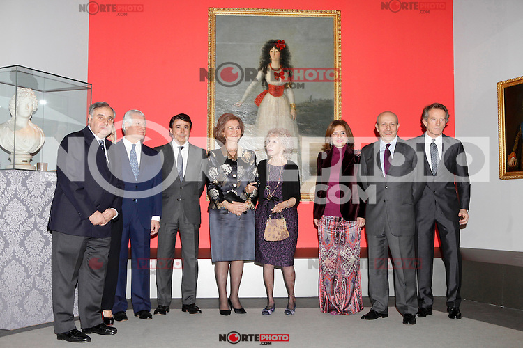 Fernando Martinez de Irujo, Carlos Martinez de Irujo, Madrid Regional President Ignacio Gonzalez, Queen Sofia of Spain, Duchess of Alba, Madrid's major Ana Botella, Spain's Minister for Education, Culture and Sport Jose Ignacio Wert Ortega and Alfonso Diez attend 'El Legado Casa de Alba' Art exhibition at the Palacio de Cibeles . December 18, 2012. (ALTERPHOTOS/Caro Marin) /NortePHOTO