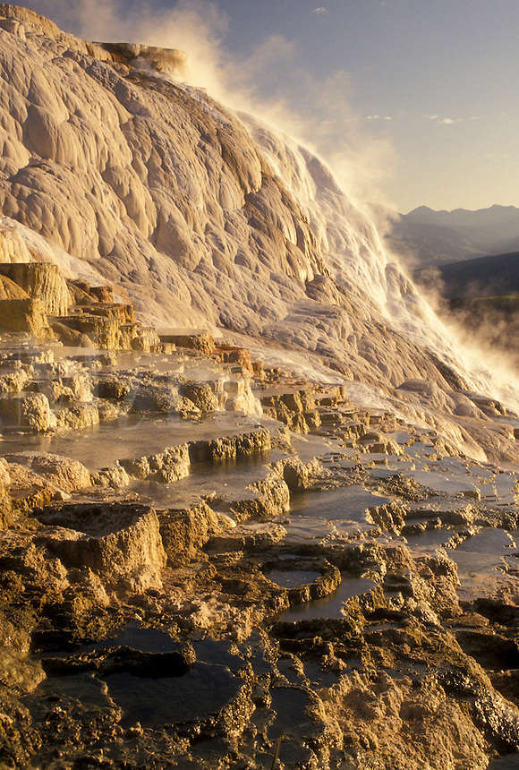 Yellowstone National Park, Mammoth Hot Springs, WY, Wyoming, Canary Springs, a terrace-like formation created by limestone deposits, at Mammoth Hot Springs in Yellowstone Nat'l Park in Wyoming.