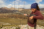 Andean Mountain Cat (Leopardus jacobita) biologist, Cintia Tellaeche, using telemetry to track female, Abra Granada, Andes, northwestern Argentina