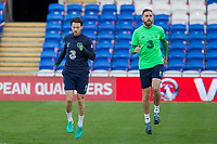 Harry Arter and Daryl Murphy during Republic of Ireland training ahead of the World Cup Qualification match against Wales at Cardiff City Stadium, Cardiff, Wales on 8 October 2017. Photo by Mark  Hawkins.