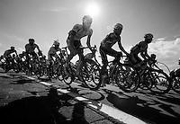 cornering peloton<br /> <br /> Eneco Tour 2013<br /> stage 1: Koksijde - Ardooie (175km)