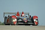 11 August 2007: Marco Werner (DEU) drives the Audi Sport North America Audi R10 TDI at the Generac 500 at Road America, Elkhart Lake, WI
