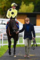 Winner of The PKF Francis Clark EBF Novice Stakes , Ace Ventura ridden by Andrea Atzeni is  led into the winners enclosure        during Afternoon Racing at Salisbury Racecourse on 4th October 2017