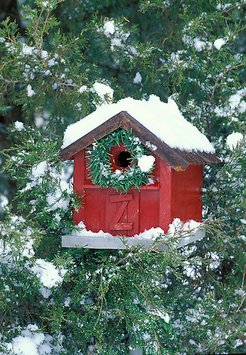 Birdhouse decorated for Christmas season with wreath