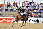 Finale 5 Mannheimer Arena Polo Cup 2015