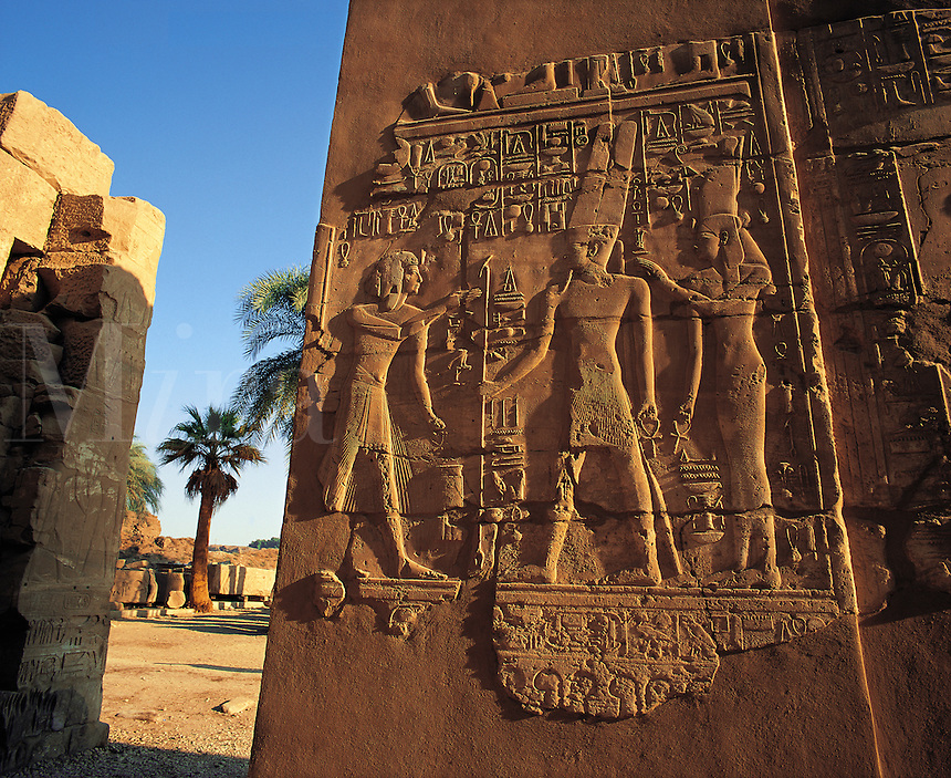 Wide-angle shot of carved stone frieze on wall at Karnak temple, blue sky and palm-trees behind, Luxor, Egyp