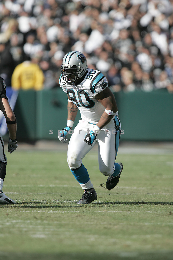 JULIUS PEPPERS, of the Carolina Panthers in action against the Oakland Raiders during the Panthers game  in Oakland, California  on November 9, 2008..Panthers win 17-6