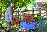 Farm manager  with wheelbarrow; Singing Frogs Farm