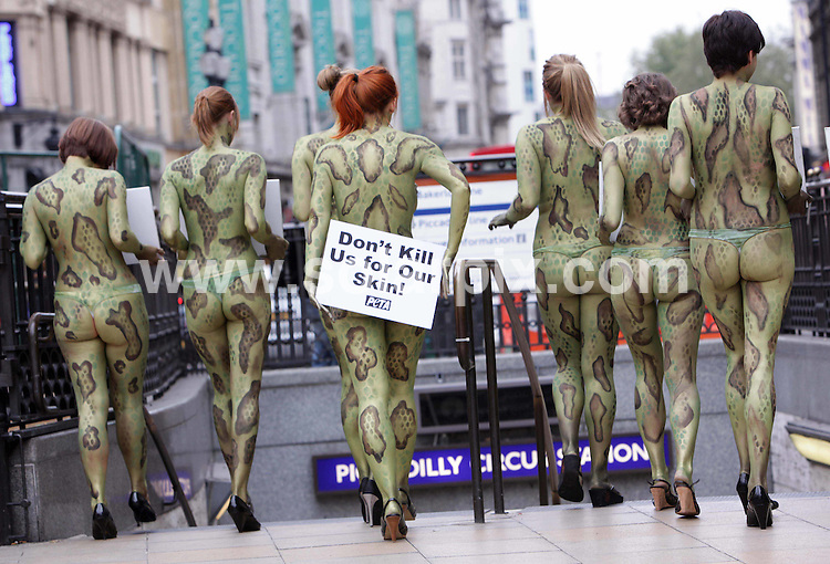 **ALL ROUND PICTURES FROM SOLARPIX.COM**.**NO UK NEWSPAPER PUBLICATION**.**UK MAGAZINE & SUPPLEMENT PUBLICATION ONLY** AND NO PUBLICATION IN AUSTRALIA, GERMANY, ITALY AND SCANDINAVIA** .Members of Peta (People Ethical Treatments Of Animals) painted their naked bodies to look like snakes and lizards, and protested in Piccadilly Circus today, urging shoppers to to stop buying exotic-animal skin handbags and belts. London, UK. 7 October 2009..This pic: PETA protesters..JOB REF: 10081 SFE       DATE: 07_10_2009.**MUST CREDIT SOLARPIX.COM OR DOUBLE FEE WILL BE CHARGED**.**MUST NOTIFY SOLARPIX OF ONLINE USAGE**.**CALL US ON: +34 952 811 768 or LOW RATE FROM UK 0844 617 7637**