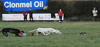 Hare coursing is the pursuit of hares with greyhounds and other sighthounds, which chase the hare by sight and not by scent. It is a competitive sport, in which dogs are tested on their ability to run, overtake and turn a hare, rather than a form of hunting aiming at the capture of game. It has a number of variations in its rules around the world. Informal coursing can be a true form of hunting. It is often conducted to kill game or vermin, mainly for food, and occasionally as a form of gambling.<br /> <br /> Coursing is a long established hunting technique, practiced historically with greyhounds, other sighthound breeds, or with lurchers which are crossbred sighthounds, and working breeds. The sport grew in popularity in Europe during the 19th century, but has since experienced a decline due in part to the introduction of greyhound racing and betting.