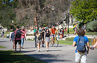 Sunny afternoon in winter near the Academic Quad, Feb. 9, 2016.<br /> (Photo by Marc Campos, Occidental College Photographer)