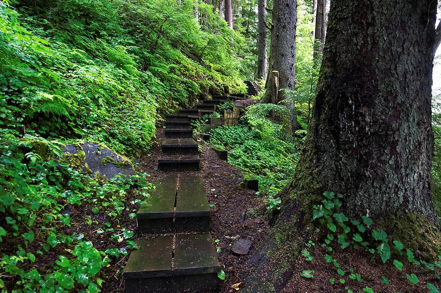 Mt. Dewey Trail, Wrangell, Alaska, USA