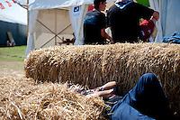 Tired guy sleeps in the hay in the autumn center. Photo: Christoffer Munkestam/Scouterna
