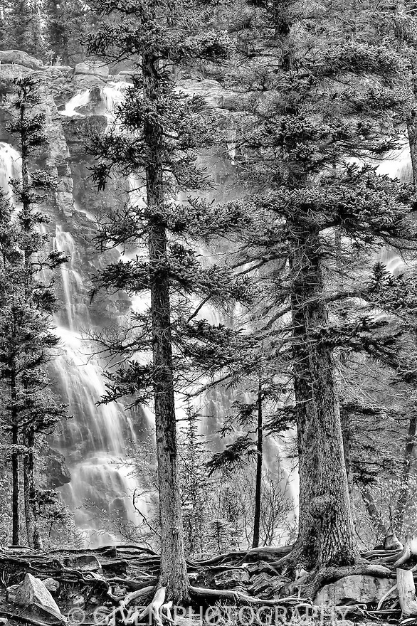 Tangle Creek Falls, Jasper National Park, Canada