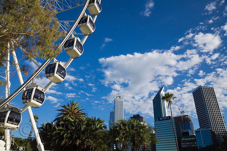 The 50 metre high Wheel of Perth ferris wheel and city skyline.  Perth, Western Australia, AUSTRALIA.