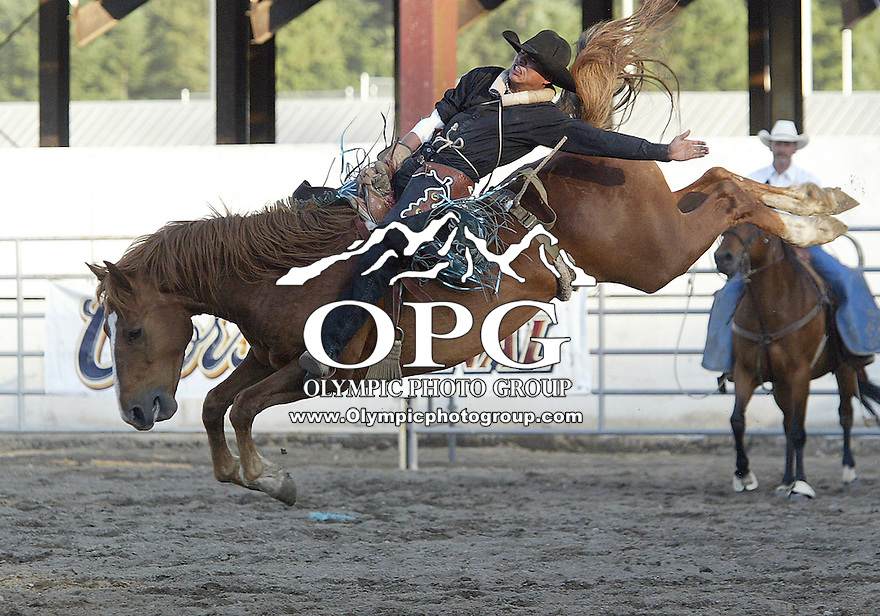 Daniel Etsitty from Bremerton, WA riding 35 High Step scored a 72 to place third in the bareback riding competition during the ThunderBird Benefit Pro Rodeo in Bremerton, Washington.