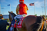 TORONT,CANADA-SEP 14: El Tormenta,ridden by Eurico da Silva, after winning the Woodbine Mile at Woodbine Race Track on September 14,2019 in Toronto,Ontario,Canada. Kaz Ishida/Eclipse Sportswire/CSM