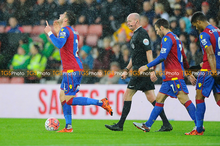 Joel Ward of Crystal Palace looks to the sky as he celebrates scoring the first goal during Southampton vs Crystal Palace at St Mary's Stadium