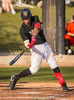 Harvard-Westlake Wolverines Drew Bowser (2) bats during a High School baseball game on February 26, 2020 in Studio City, California.  (Terry Jack/Four Seam Images)