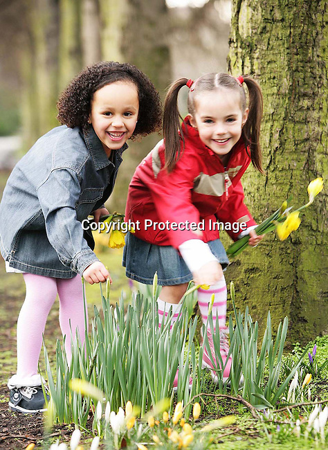 Rachel Dulipe 5 from Dublin City Centre and Jade McGowan 6 from Castlenock enjoying the first of the Spring daffodils. All three are wearing clothes from the new Timberland Spring Summer kids collections;photo Kieran Harnett