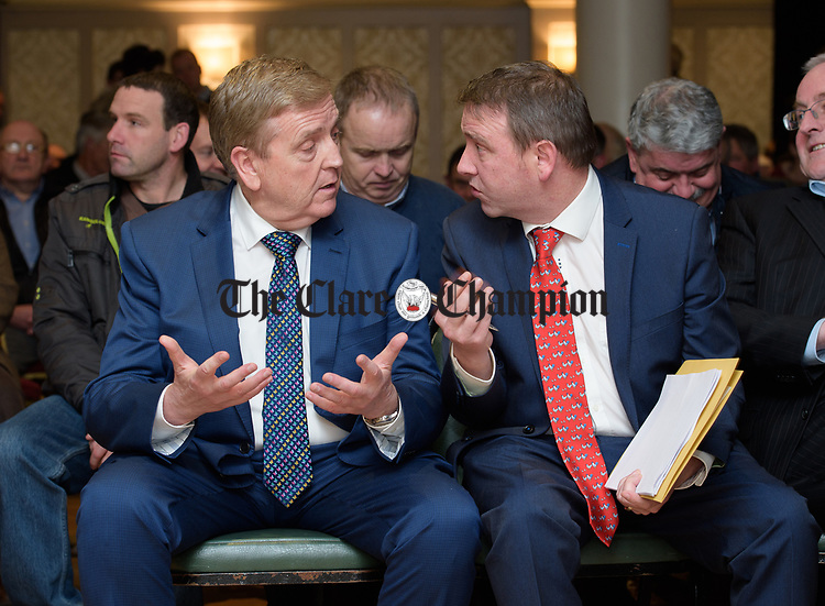 TD's Pat Breen and Joe Carey chatting before the Clare Fine Gael selection convention in the Auburn Lodge hotel, Enis. Photograph by John Kelly.