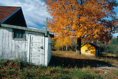 Old farm buildings during fall color in Herman, in Michigan's Upper Peninsula.