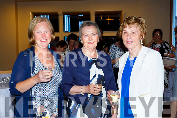 Eileen McSparron, kathleen Naughton and Eileen Murphy at the Models in Recovery fashion show on a Tuesday night