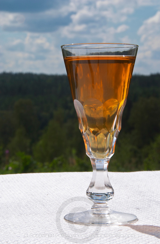 Swedish traditional aquavit schnapps glass in pointed form filled to the brim with spiced vodka, brannvin. A blue and cloudy summer sky in the background. Sweden, Europe.