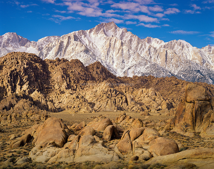 """Alabama Hills Recreation Area (protected habitat), managed by the BLM, a """"range of hills"""" and rock formations near the eastern slope of the Sierra Nevada Mountains in the Owens Valley. Lone Pine Peak in background. Orange, drab weathered metamorphosed volcanic rock that is 150-200 million years old and 90 million year old granite that weathers to potato-shaped large boulders, many of which stand on end due to spheroidal weathering acting on many vertical joints in the rock. Named by Confederate sympathizers after CSS Alabama sunk off coast of Normandy by USS Kearsarge in 1864. Popular location for hundreds of westerns and other films. Inyo County, CA."""