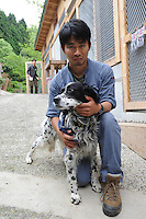 English Setter named Frostbite by the rescuers at ARK on the 18th April, the dog's Japanese name is Buchan. The dog was rescued from Nami-cho  from the nuclear evacuation zone by ARK animal refuge.  ARK has rescued more than 200 dogs, 16 cats and a guinea pig from with-in the nuclear exclusion zone surrounding the Fukushima Daiichi nuclear power plant in Japan...© Richard Jones/ sinopix.PHOTO BY SINOPIX