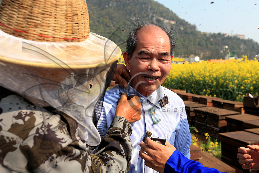 Le secret de la barbe d'abeilles: Installer les reines de plusieurs ruches dans des cages. Fixer ses cages à reines autour du cou de l'apiculteur. Puis laisser les assistants vous recouvrir d'abeilles. Les abeilles sont tranquilles. Elles rejoignent leurs reines, comme si la colonie avait décidé d'essaimer (de quitter la ruche pour coloniser un nouvel habitat). Monsieur Yang Chuan sera quand même piqué plusieurs fois au visage et ce tour de magie n'est pas recommandé aux néophytes.///The secret of the bee beard. Put the queens from several hives in cages. Attach the cages of queens around the beekeeper's neck, then let the assistants cover him with bees. The bees are tranquil. They join their queen as though the colony had decided to swarm (i.e. to leave one hive to colonize a new habitat). Mister Yang Chuan will still be stung several times in the face and this magic trick is not recommended for novices.