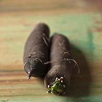 Gastronomie Générale: Radis noir<br />  - Stylisme : Valérie LHOMME