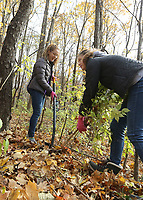 Students worked at removing invasive species of plants at Cool Creek Park in Westfield.  (L-R) Erica Huncklen and Kelly Igo