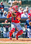 4 March 2016: St. Louis Cardinals catcher Eric Fryer in action during a Spring Training pre-season game against the Houston Astros at Osceola County Stadium in Kissimmee, Florida. The Cardinals fell to the Astros 6-3 in Grapefruit League play. Mandatory Credit: Ed Wolfstein Photo *** RAW (NEF) Image File Available ***