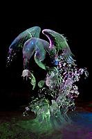 "Japanese artists Junichi Nakamura and Suguru Kanbayashi. Single block, realistic sculpture titled ""Surfacing Kingfisher"" First place realistic category, 2009 World Ice Art Championships in Fairbanks, Alaska."
