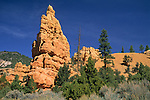 Hoodoo in Red Canyon State Park near Bryce Canyon, UTAH
