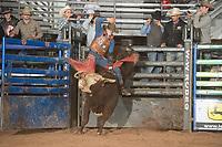 SEBRA - Beckley, WV - 1.13.2018 - Bulls & Action