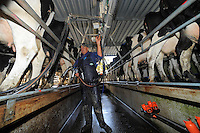 Worksafe NZ dairy farming photoshoot at Gardiner Farm at Otaki, New Zealand on Thursday, 8 May 2014. Photo: Dave Lintott / lintottphoto.co.nz