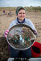 19/01/19<br /> <br /> Jane Skellern sifts staggering amounts of small plastics from piles of seaweed. <br /> <br /> Volunteers clean beaches near Cable Bay Anglesey to mark the RSPCA's 'PlastOff2019'<br /> <br /> All Rights Reserved, F Stop Press Ltd +44 (0)7765 242650  www.fstoppress.com rod@fstoppress.com
