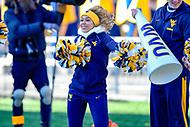 Morgantown, WV - NOV 10, 2018: West Virginia Mountaineers cheerleader performs during game between West Virginia and TCU at Mountaineer Field at Milan Puskar Stadium Morgantown, West Virginia. (Photo by Phil Peters/Media Images International)